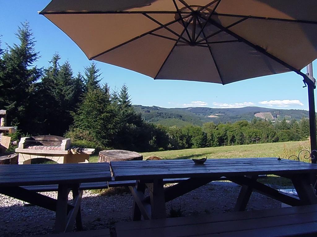 terrasse pomme de pin